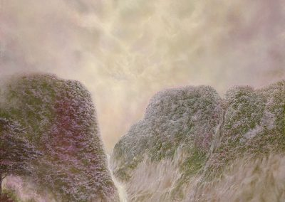 Pink garden VI • 2020 • 80 x 40 cm • acrílico sobre madera • Realismo mágico · pintura