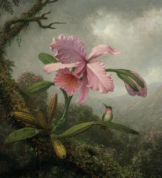 Nature in evolution · From Van Goyen to Pissarro and Sacharoff · Carmen Thyssen Collection