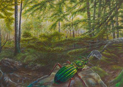 Hunter Lying in Waiting • 2010 • 33 x 71 cm • acrylic on wood panel