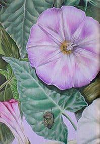 Enrredadera • 2008 • 92 x 20 cm • acryl auf holzes · Magischer Realismus · Malerei