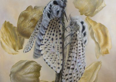 Hel-Hada • 2012 • 160 x 160 cm • acrylique sur planche • Réalisme magique · Peinture