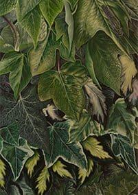 Hiedra sobre acanto • 2009 • 200 x 40 cm • acryl auf holzes · Magischer Realismus · Malerei
