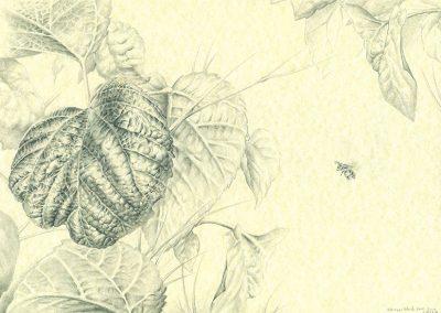 Memorias-en-San-Rafael_III · 21x29,5cm · 2015 · الغرافيت على الورق · فنون تشكيلية • واقعية سحرية